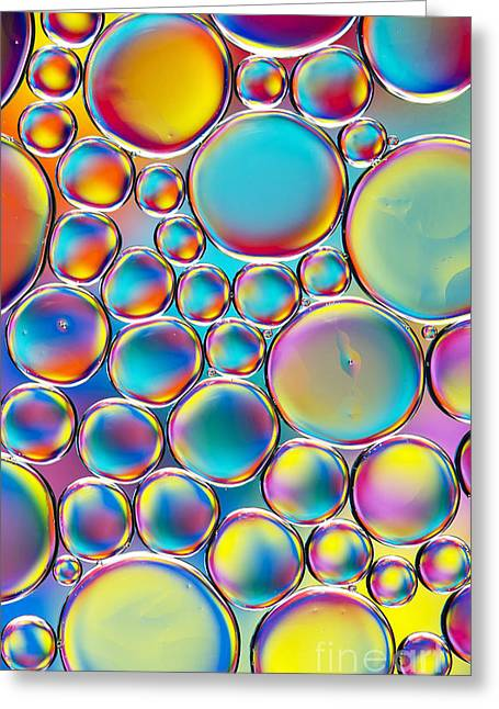 Colour Me Cool Greeting Card by Tim Gainey