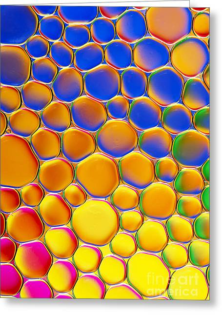 Colour Me Happy Greeting Card by Tim Gainey