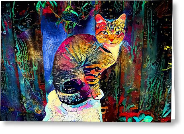 Colourful Calico Greeting Card