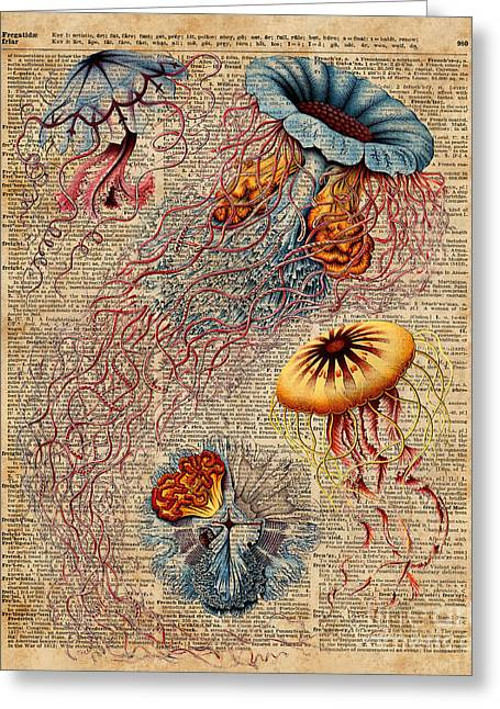 Colourful Jellyfish Marine Animals Illustration Vintage Dictionary Book Page,discomedusae Greeting Card by Jacob Kuch