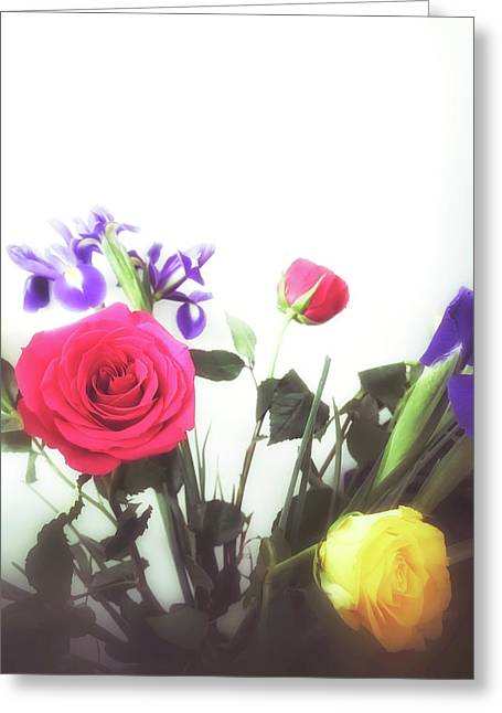Colourful Roses Greeting Card by Tom Gowanlock