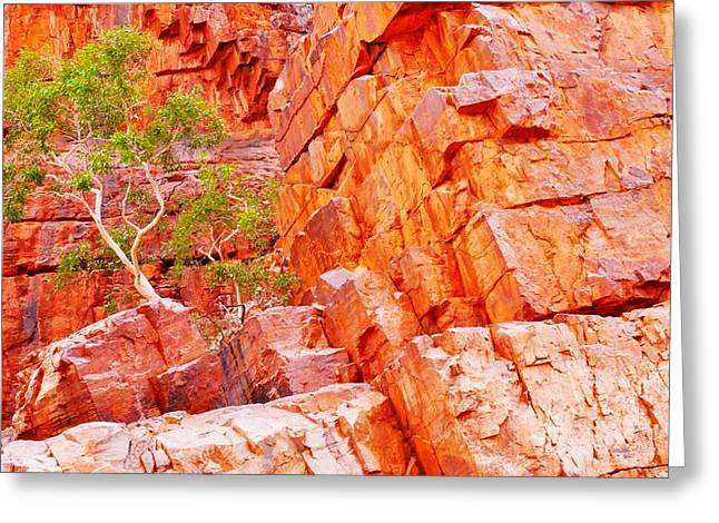 Colours Of Ormiston Gorge, Northern Territory Greeting Card