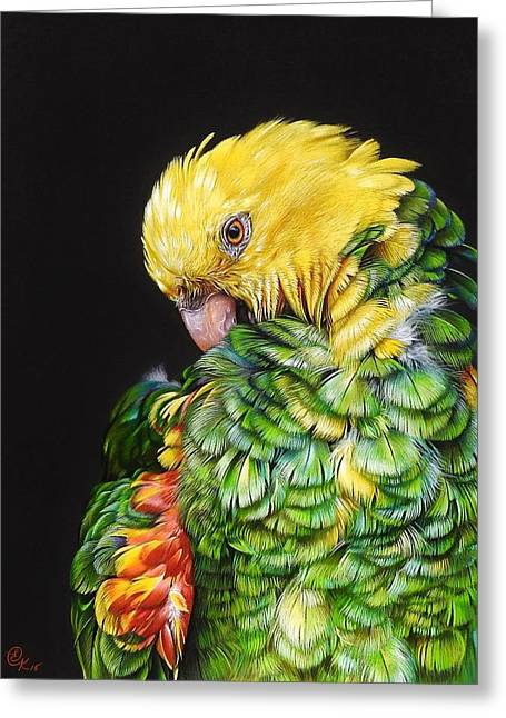 Colours Of The Jungle - Yellow-headed Amazon Greeting Card by Elena Kolotusha