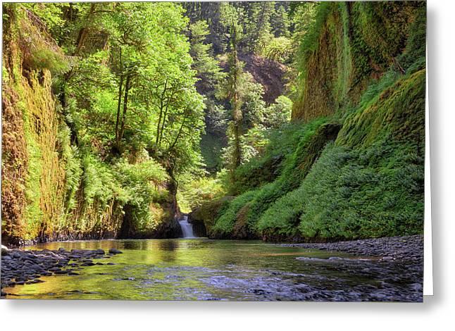 Columbia Gorge Waterfall In Summer Greeting Card