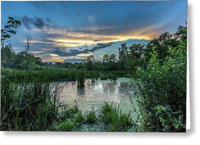 Columbia Marsh Sunset Greeting Card