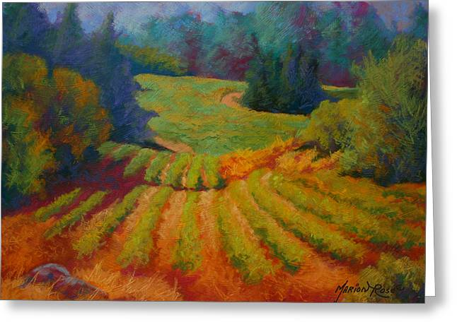 Columbia Valley Vineyard Greeting Card by Marion Rose