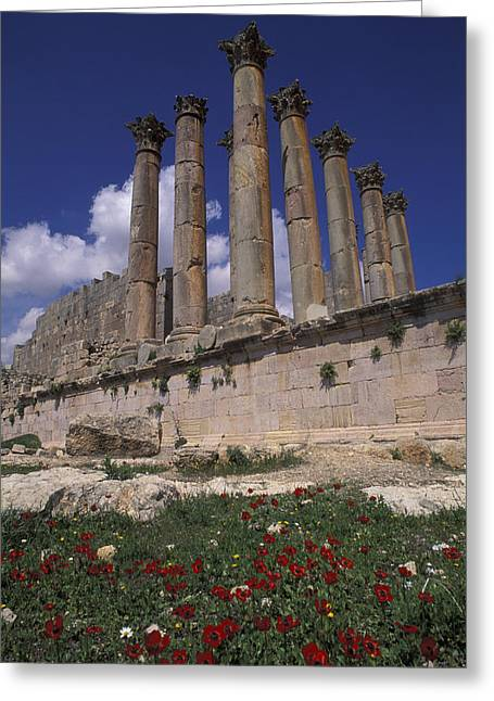 Columns In The Ancient Roman City Greeting Card by Richard Nowitz