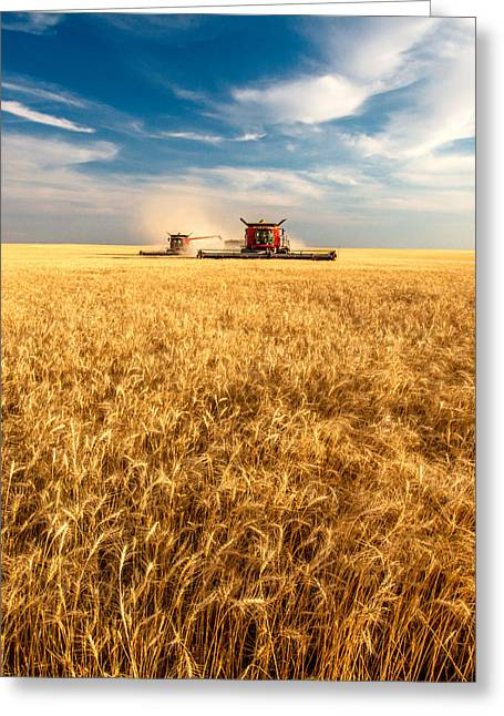 Combines Cutting Wheat Greeting Card by Todd Klassy