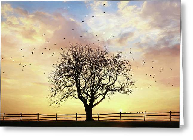 Greeting Card featuring the photograph Come Fly Away by Lori Deiter