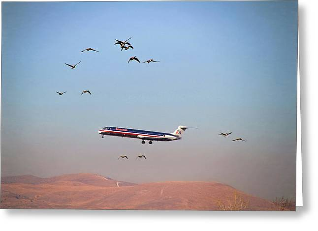 Come Fly With Me Greeting Card by Donna Kennedy