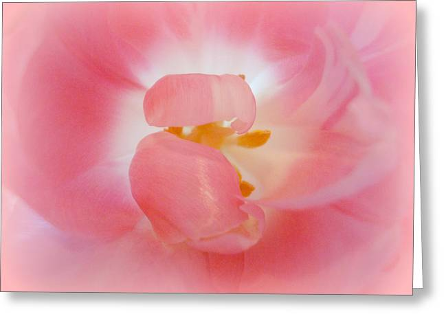 Come Into The Light Greeting Card by Kathy Bucari