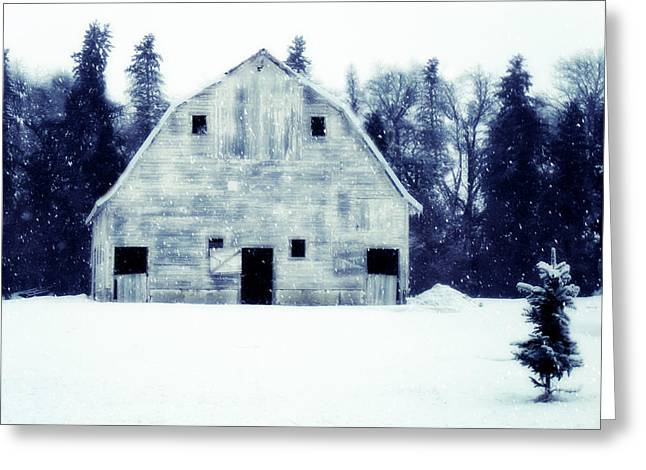 Come On In Greeting Card by Julie Hamilton