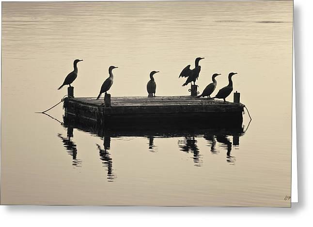 Comerants And Dock Taunton River Greeting Card by David Gordon