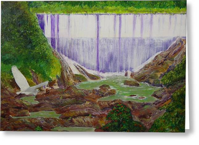 Comerio Dam Greeting Card by Tony Rodriguez
