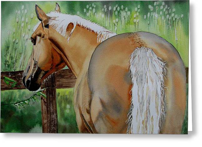 Horse In Field Greeting Cards - Comet Greeting Card by Maria Barry