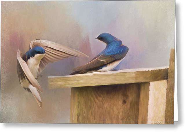Coming Home To You - Bird Art Greeting Card