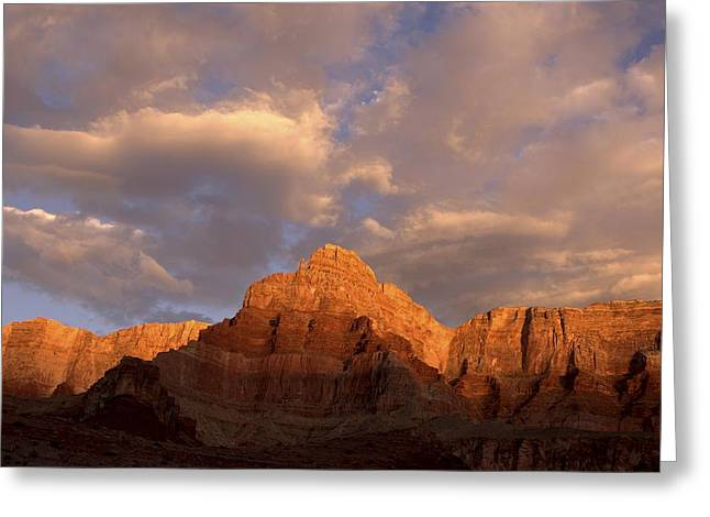 Commanche Point  Grand Canyon National Park Greeting Card
