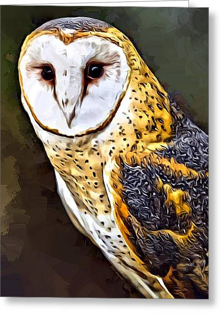 Common Barn Owl Painting Greeting Card by Scott Wallace