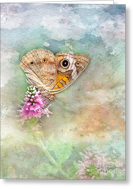 Greeting Card featuring the photograph Common Buckeye by Betty LaRue