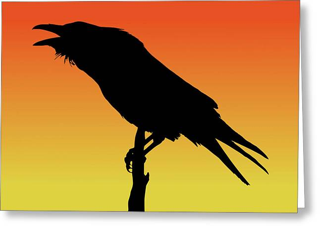 Common Raven Silhouette At Sunset Greeting Card