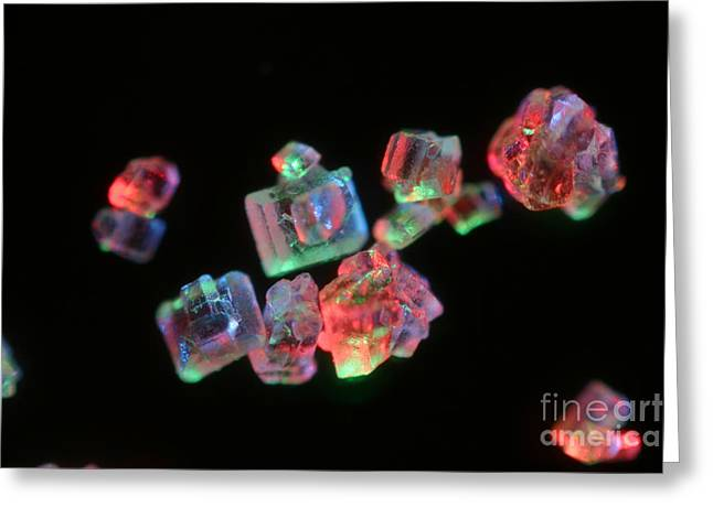 Common Table Sugar Under A Microscope Greeting Card by Ted Kinsman