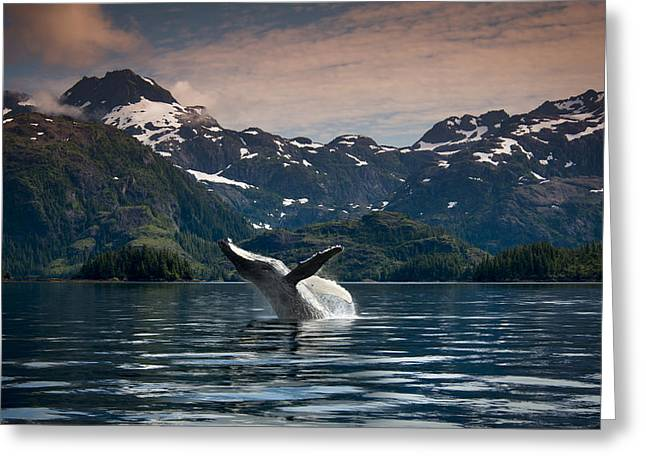 Composite Breaching Humpback Whale Greeting Card