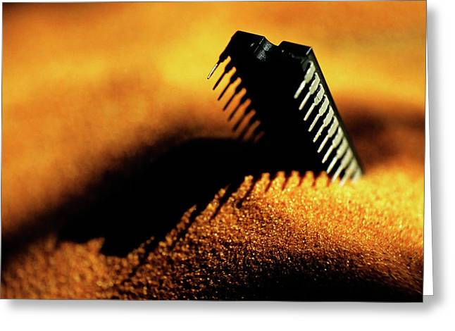 Buried Greeting Cards - Computer chip half-buried in sand Greeting Card by Sami Sarkis