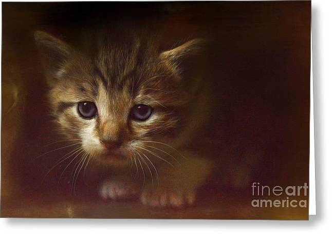 Concentration Greeting Card by Kathy Russell
