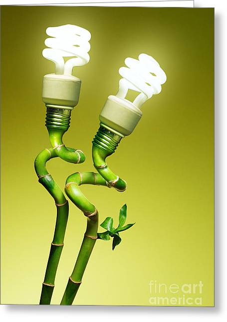 Recycle Greeting Cards - Conceptual lamps Greeting Card by Carlos Caetano