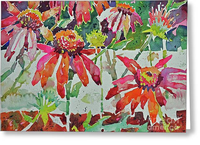 Cone Flowers And  Three Bands Greeting Card