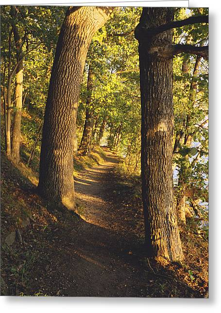 Conference Point Path - Lake Geneva Wisconsin Greeting Card