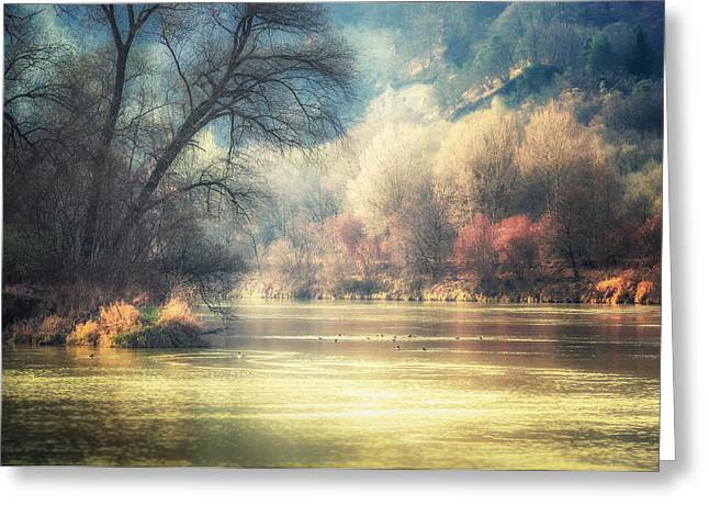 Confluence Greeting Card by Alexander Kunz