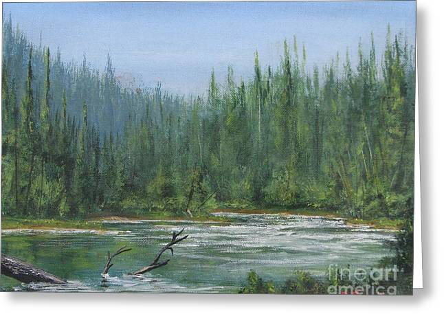 Confluence At First Light Greeting Card by Dana Carroll