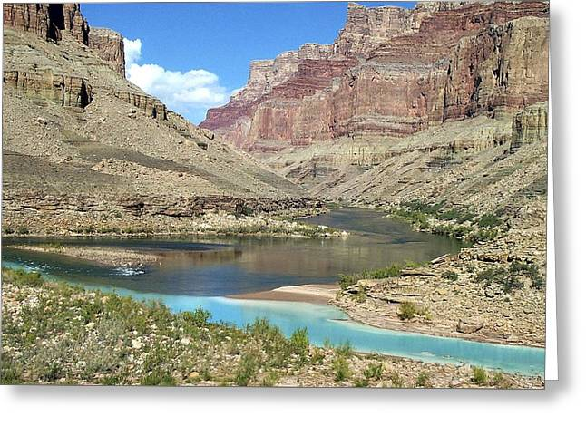 Confluence Of Colorado And Little Colorado Rivers Grand Canyon National Park Greeting Card