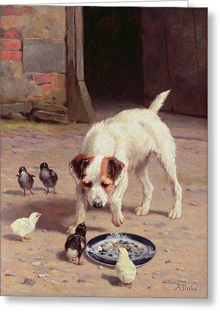 Doggy Greeting Cards - Confrontation Greeting Card by Alfred Duke