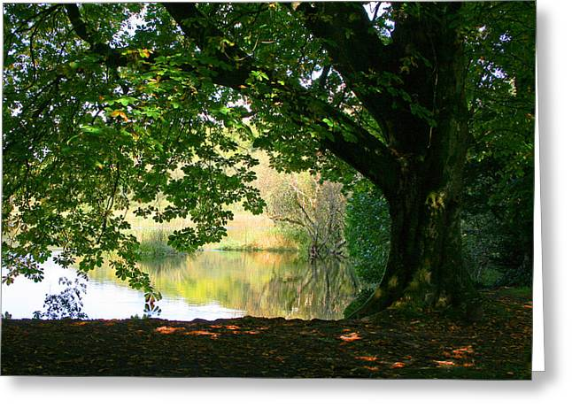 Cong Park Greeting Card