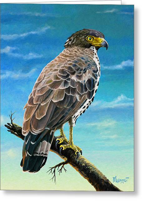 Congo Serpent Eagle Greeting Card