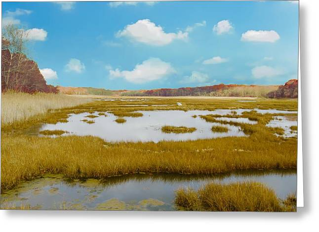 Connecticut Salt Water Marsh Greeting Card