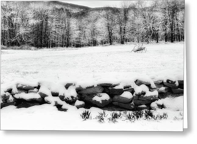 Connecticut Spring Snow 2016 Greeting Card