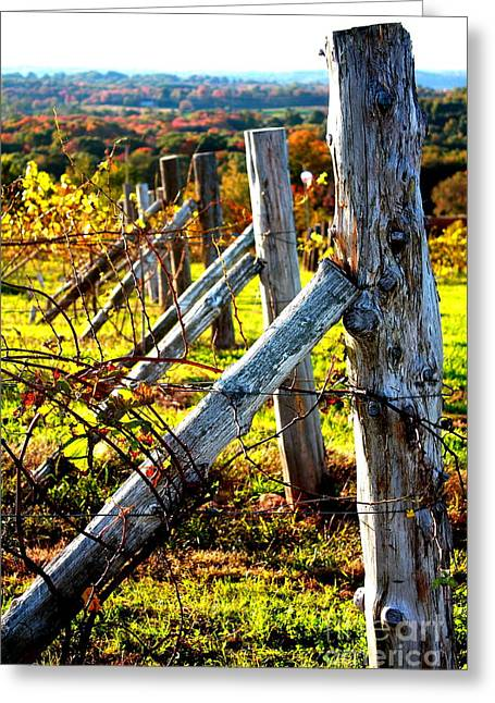 Connecticut Winery In Autumn Greeting Card