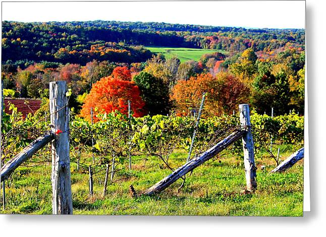 Connecticut Winery Greeting Card