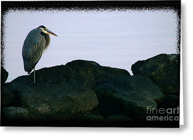 Contemplating Heron Greeting Card by Clayton Bruster