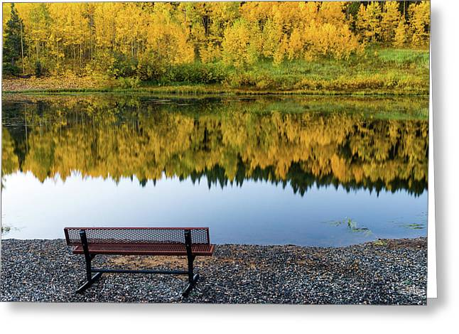 Greeting Card featuring the photograph Contemplating The Colors Of A Colorado Autumn by John De Bord