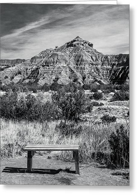 Contemplation Bench Bw Greeting Card