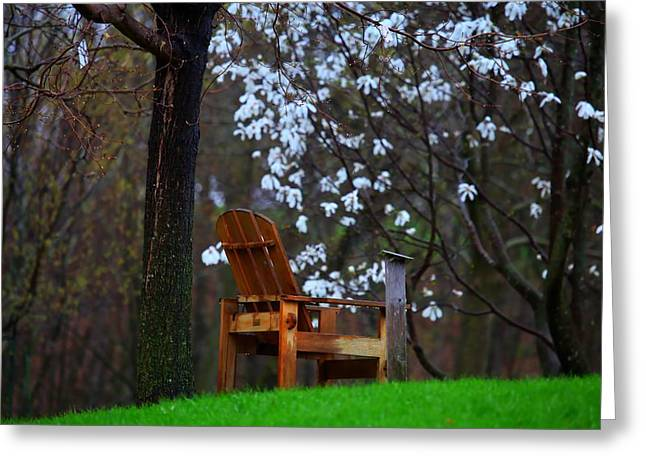 Contemplation Chair Greeting Card by David Christiansen