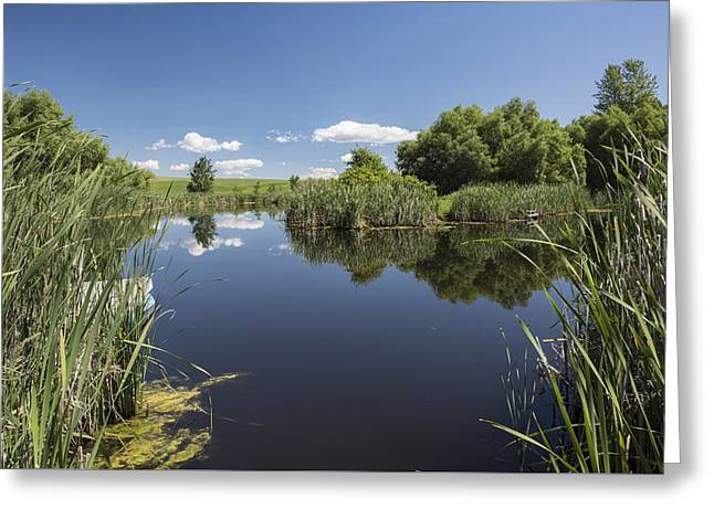 Contemplation Greeting Card by Jon Glaser