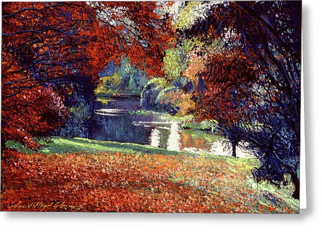 Contemplation Lake Greeting Card by David Lloyd Glover