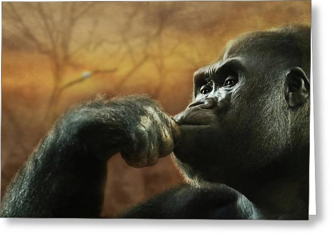 Greeting Card featuring the photograph Contemplation by Lori Deiter