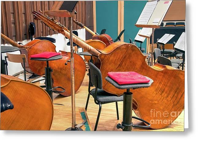 Contra-basses On The Stage During A Break Greeting Card by Bratislav Stefanovic