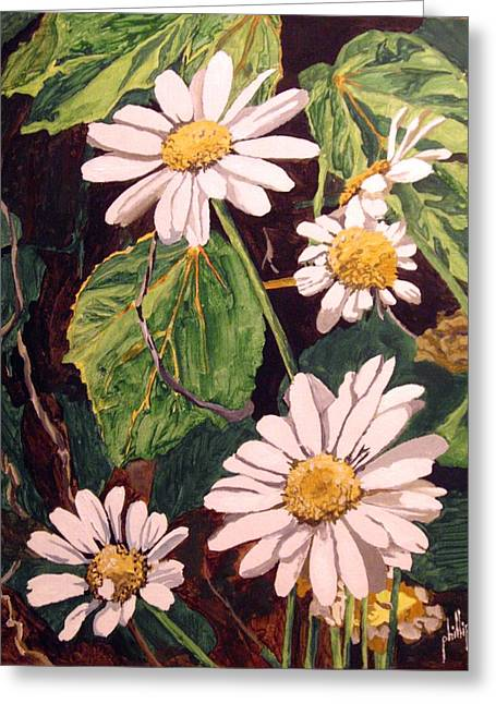 Contrasting Daisies Greeting Card by Jim Phillips